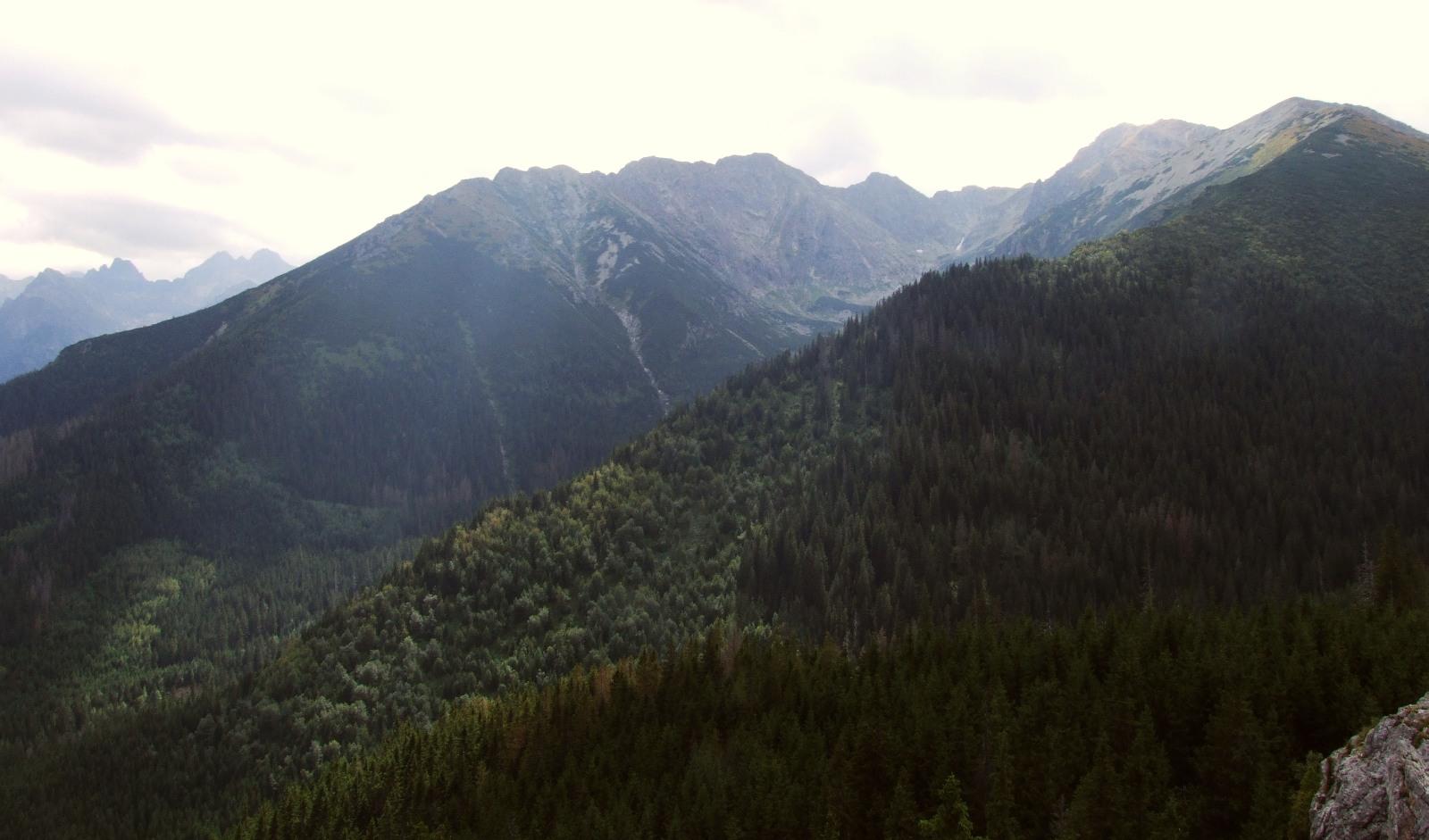 Dolina Waksmundzka (źródło: Wikimedia)