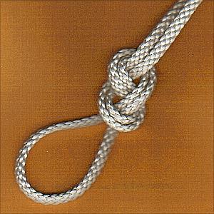 Figure-eight loop