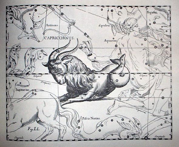 Pan, Capricornus, Ziegenfsich, Steinbock
