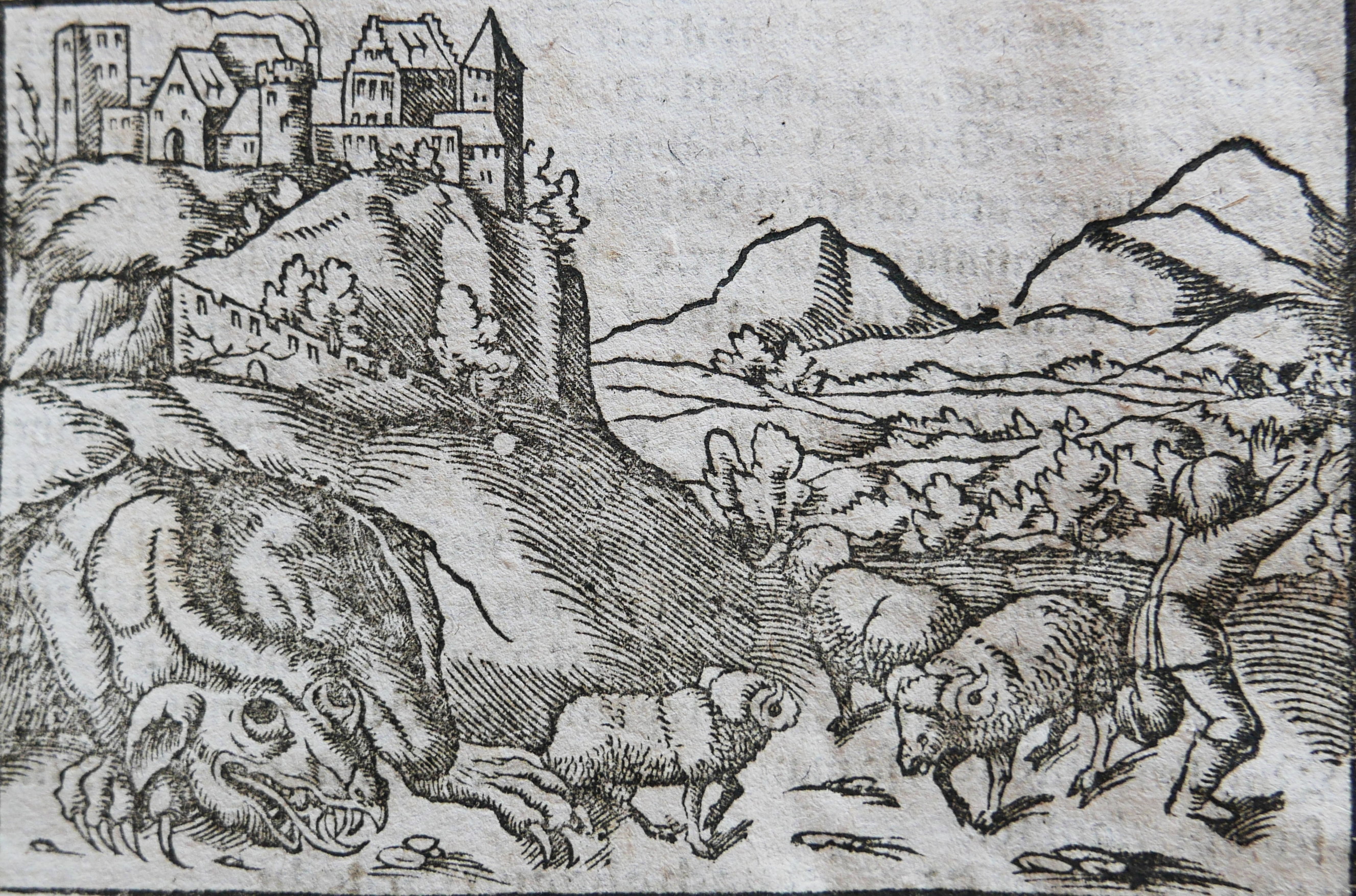 Dragon de Cracovie dans un oeuvre de Munster en 1544.