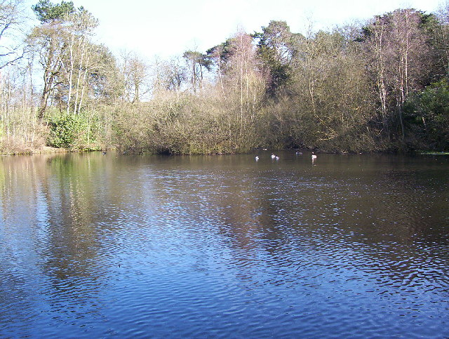 Moat Mount Lake - geograph.org.uk - 127637