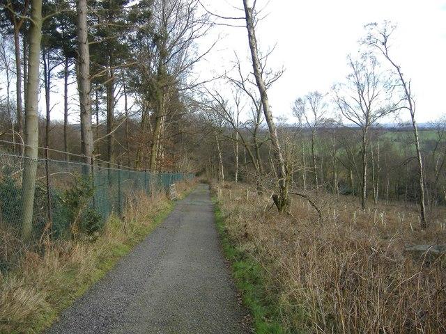 Path to Bardon Hill - geograph.org.uk - 347947