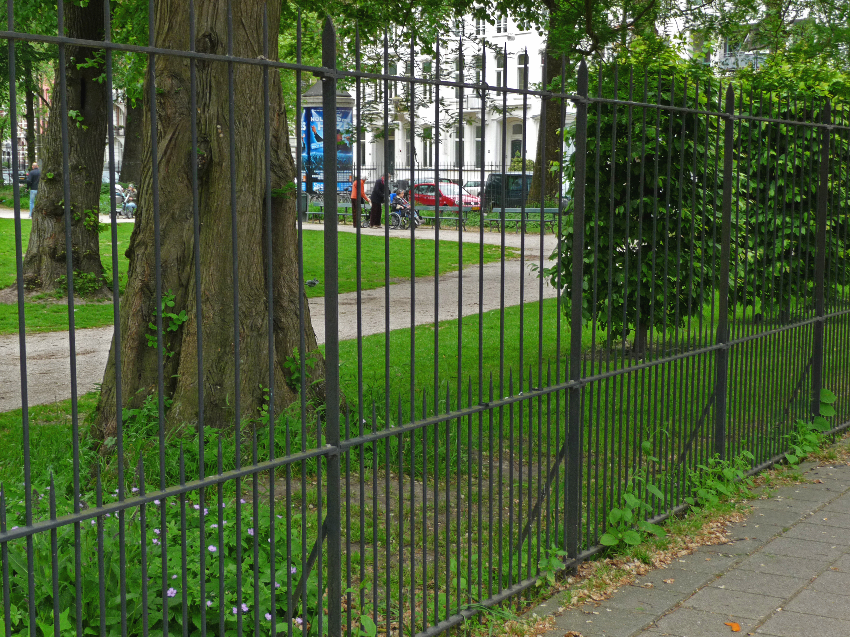 File Photo Of The Fence And Tree Trunks In The Wertheim