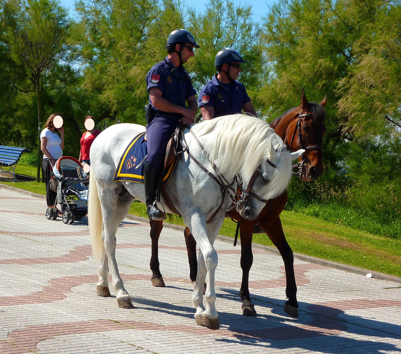 Descripción Policías Nacionales a caballo.JPG