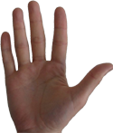 Датотека:Right hand.png