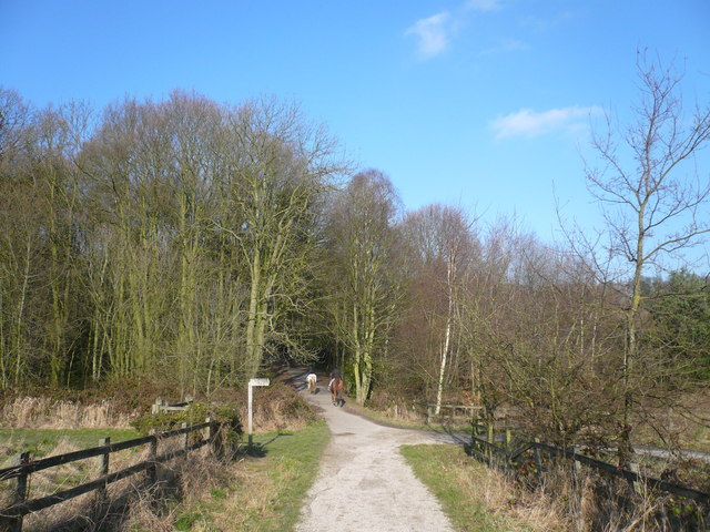 Shipley Country Park - Nutbrook Trail View - geograph.org.uk - 681828