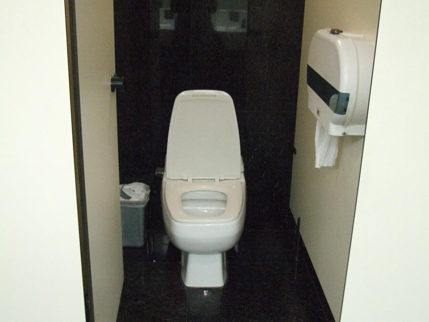 zhenskiy-tualet-skritaya-kamera-besplatno