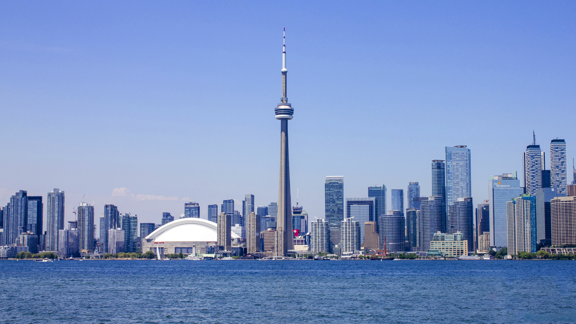 Paralegal in Toronto, Ontario<small>Get Affordable and Professional Paralegal Help</small>