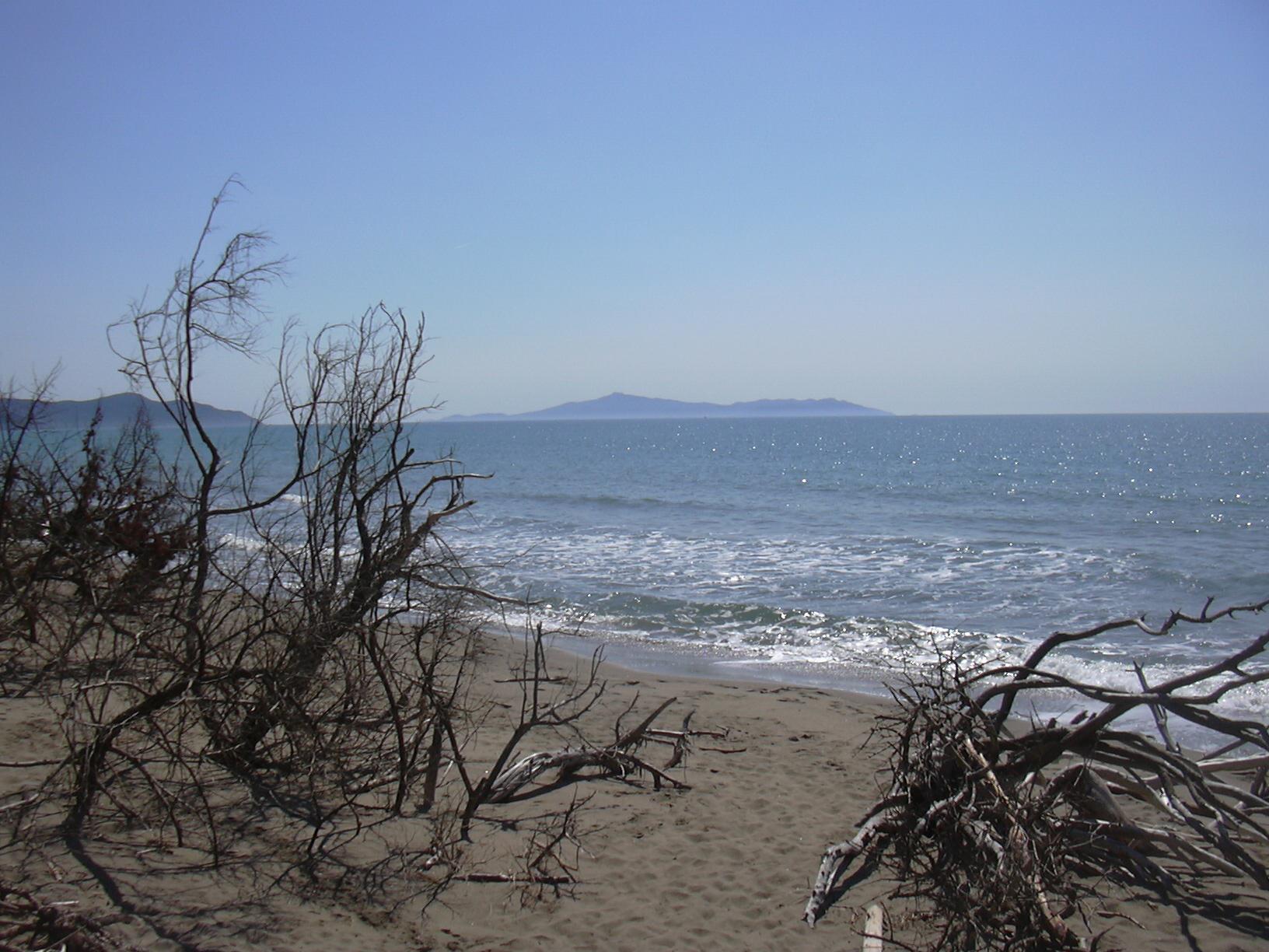 Parco Naturale delle Maremma, beach