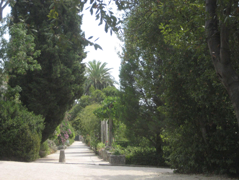 File:Arboretum Trsteno-3.JPG - Wikimedia Commons