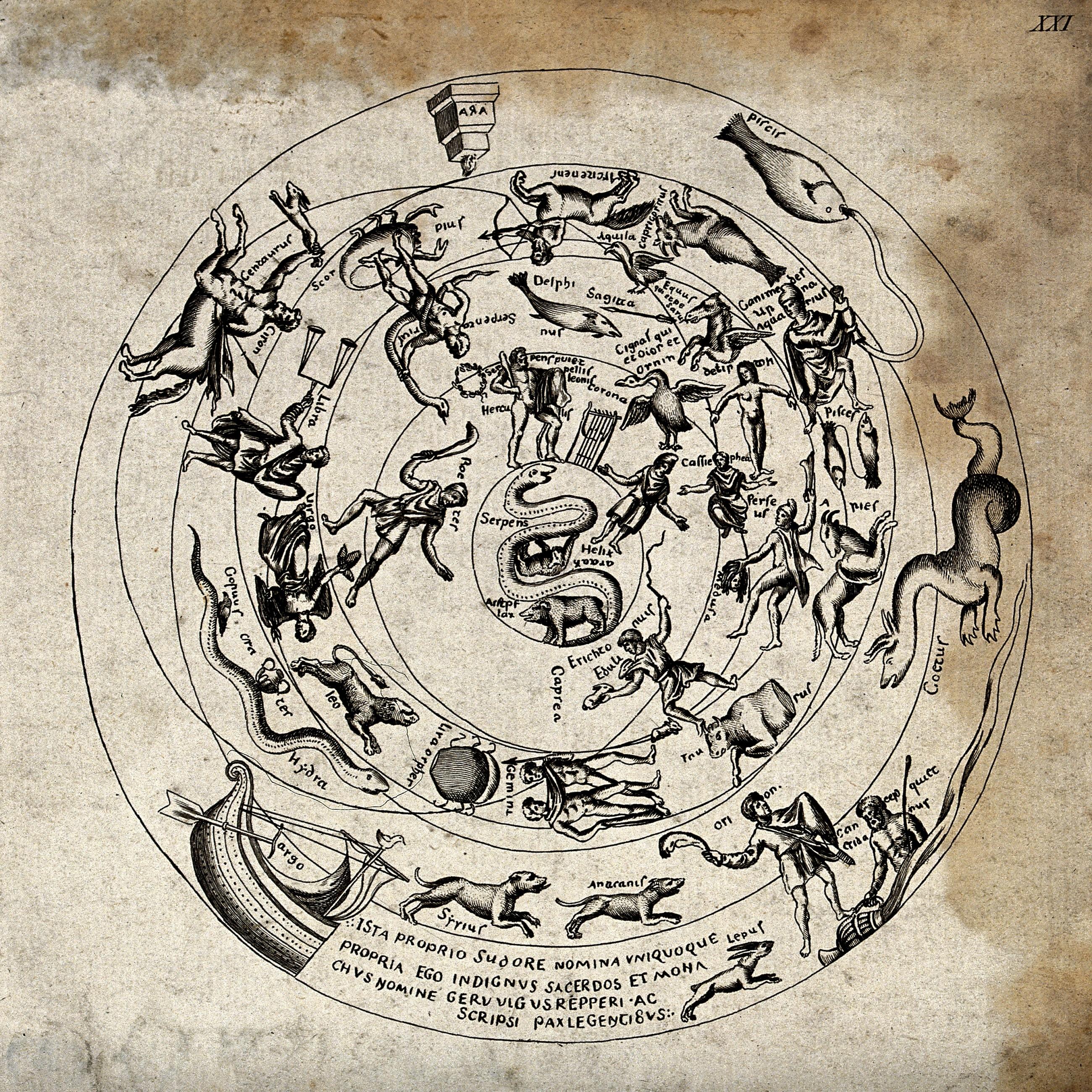 Full Zodiac Chart Calculator: Astrology; the zodiac. Etching. Wellcome V0024919.jpg ,Chart