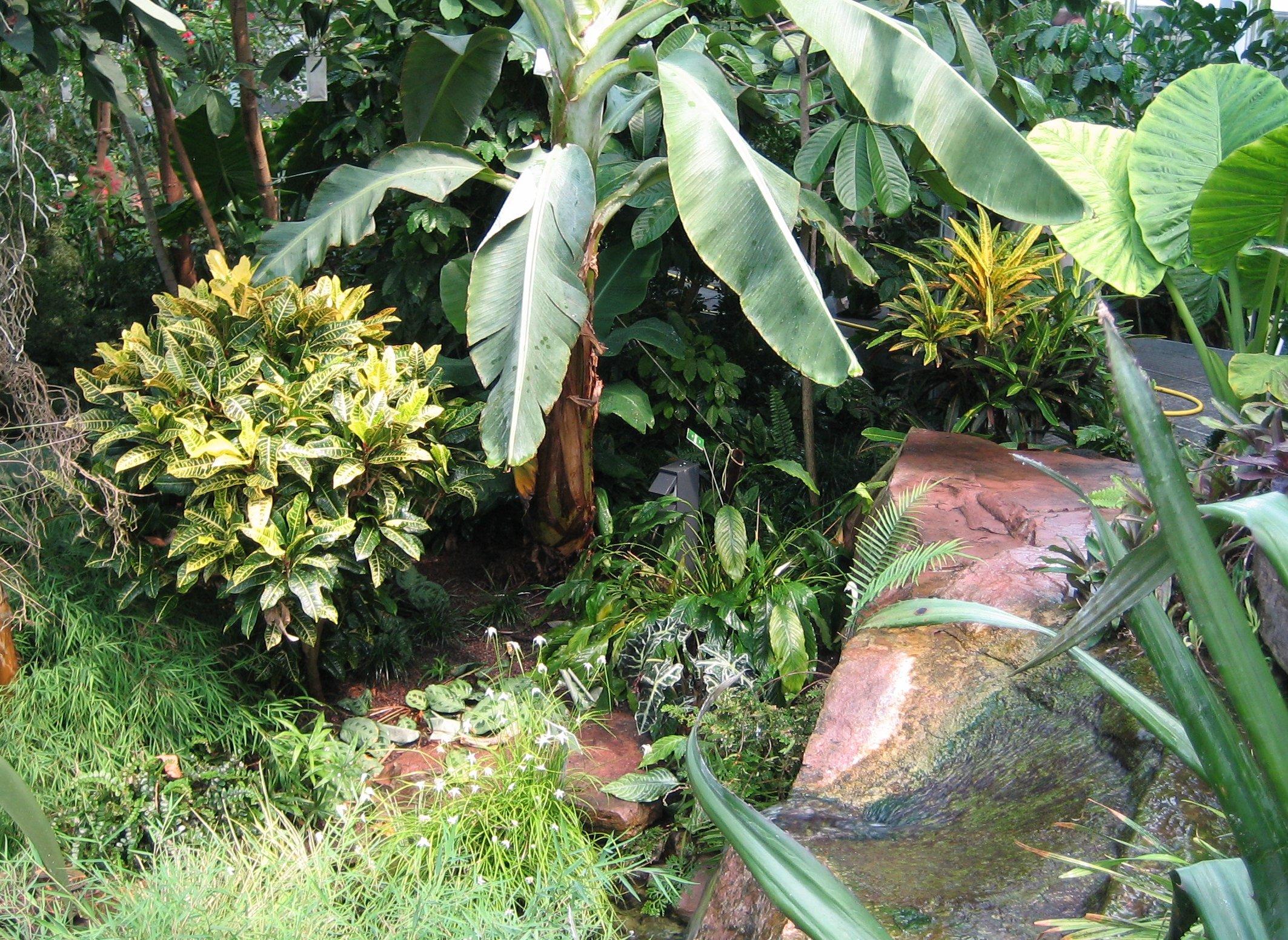 Botanischer Garten Augsburg ? Wikipedia Garten Pavillon Tropische Pflanzen