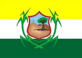 4636c29ab Timbaúba – Wikipédia, a enciclopédia livre