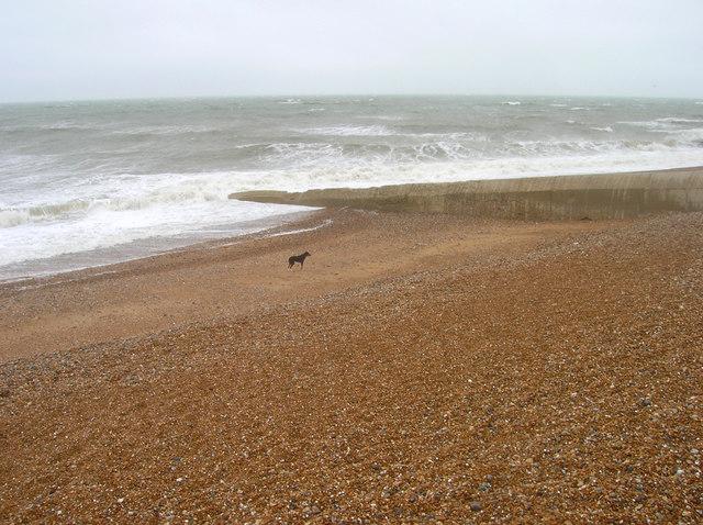File:Bank Holiday Monday, Hove Beach - geograph.org.uk - 426638.jpg