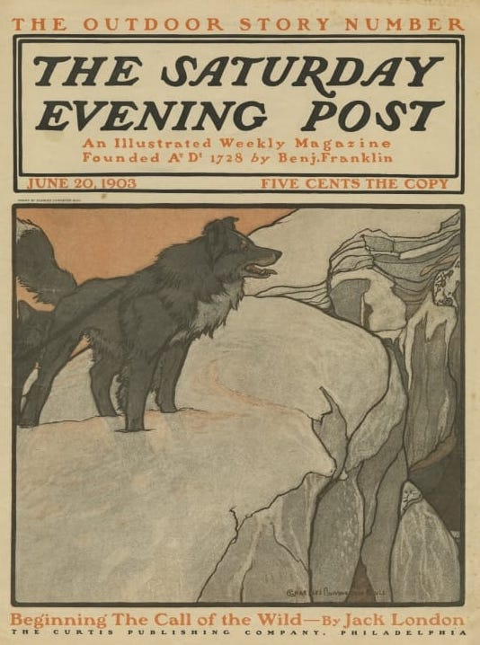 Call of the Wild (Saturday Evening Post).jpg