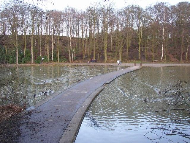 Causeway across the lake, Newmillerdam Country Park, Crigglestone - Chevet - geograph.org.uk - 317185