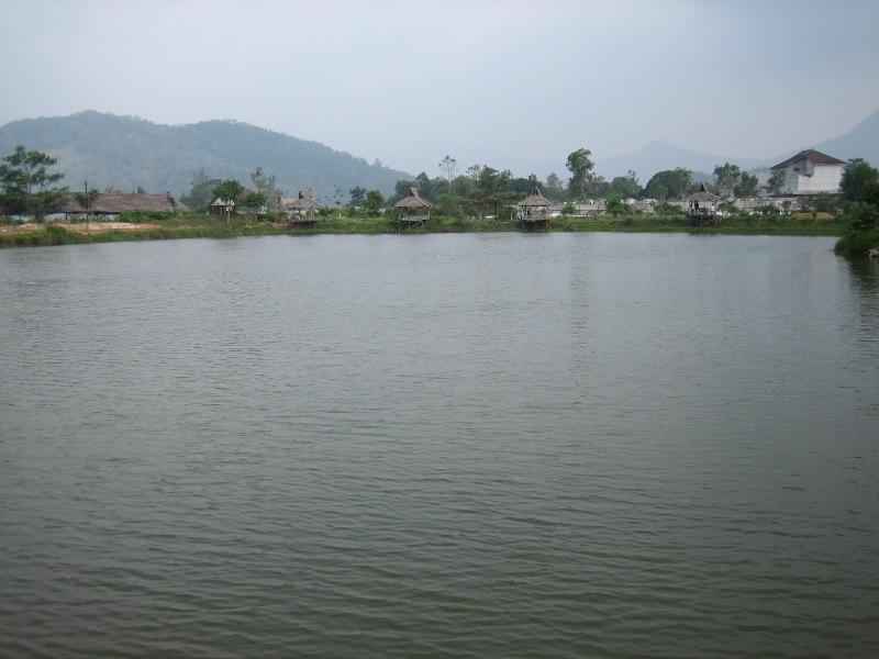 Danau Teratai - panoramio.jpg