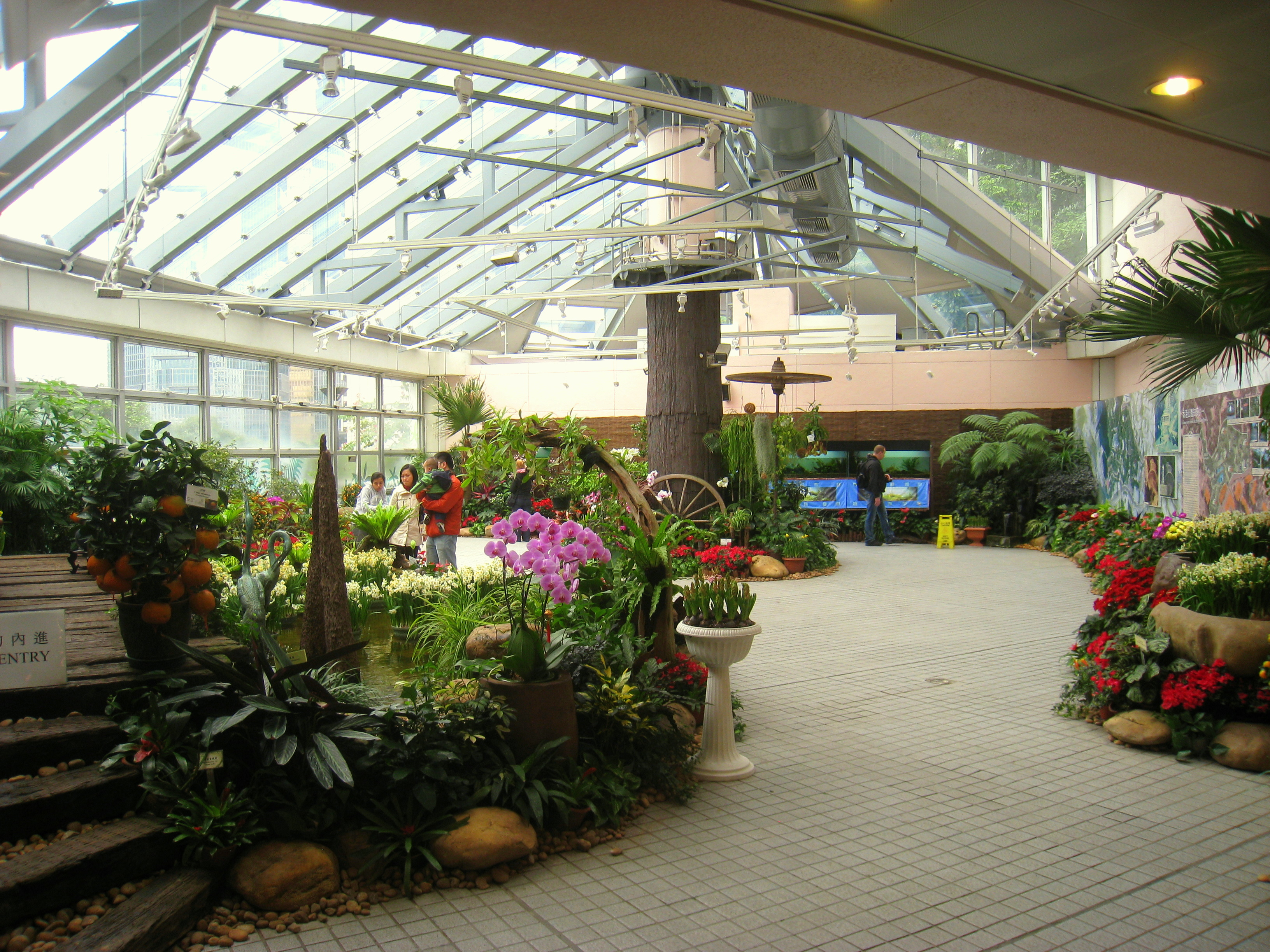 File Display Plant House Hong Kong Park Conservatory Img 9805 Jpg Wikimedia Commons