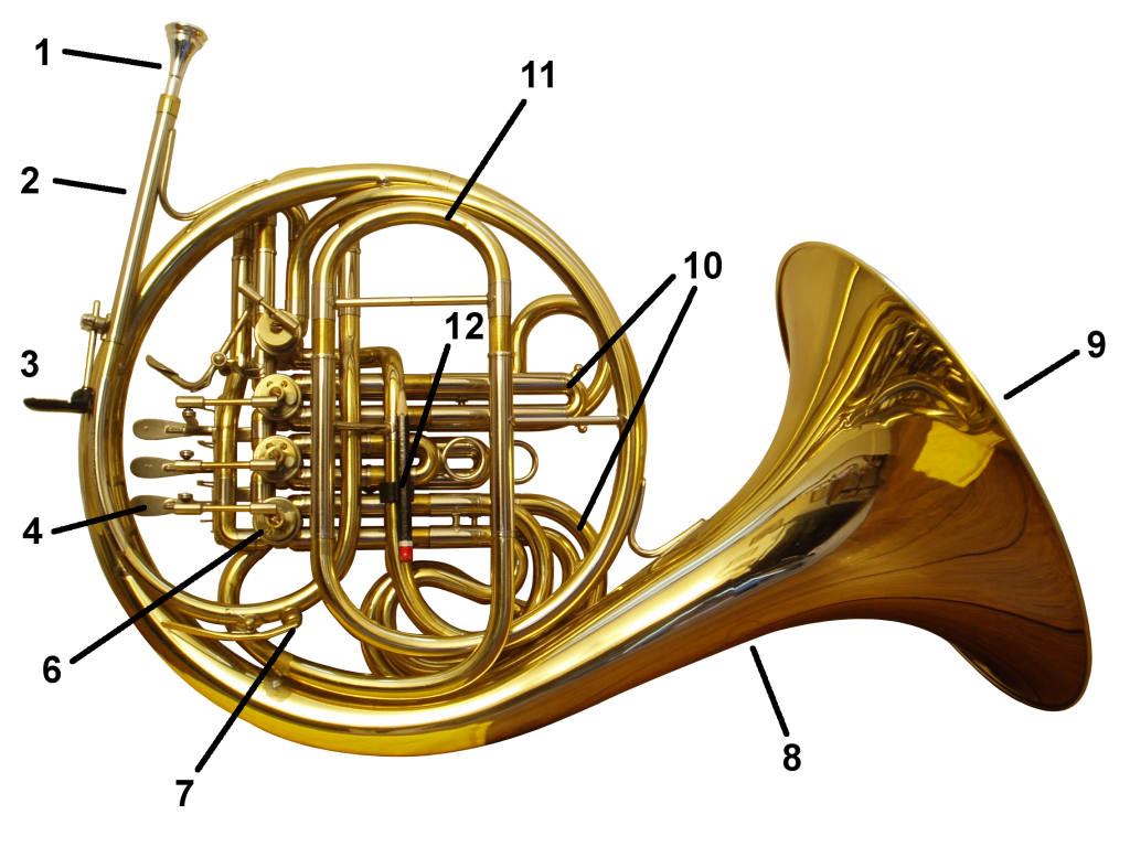File:French horn back labelled.png - Wikimedia Commons