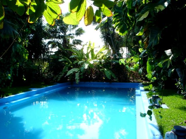 File:Hemingway pool.JPG