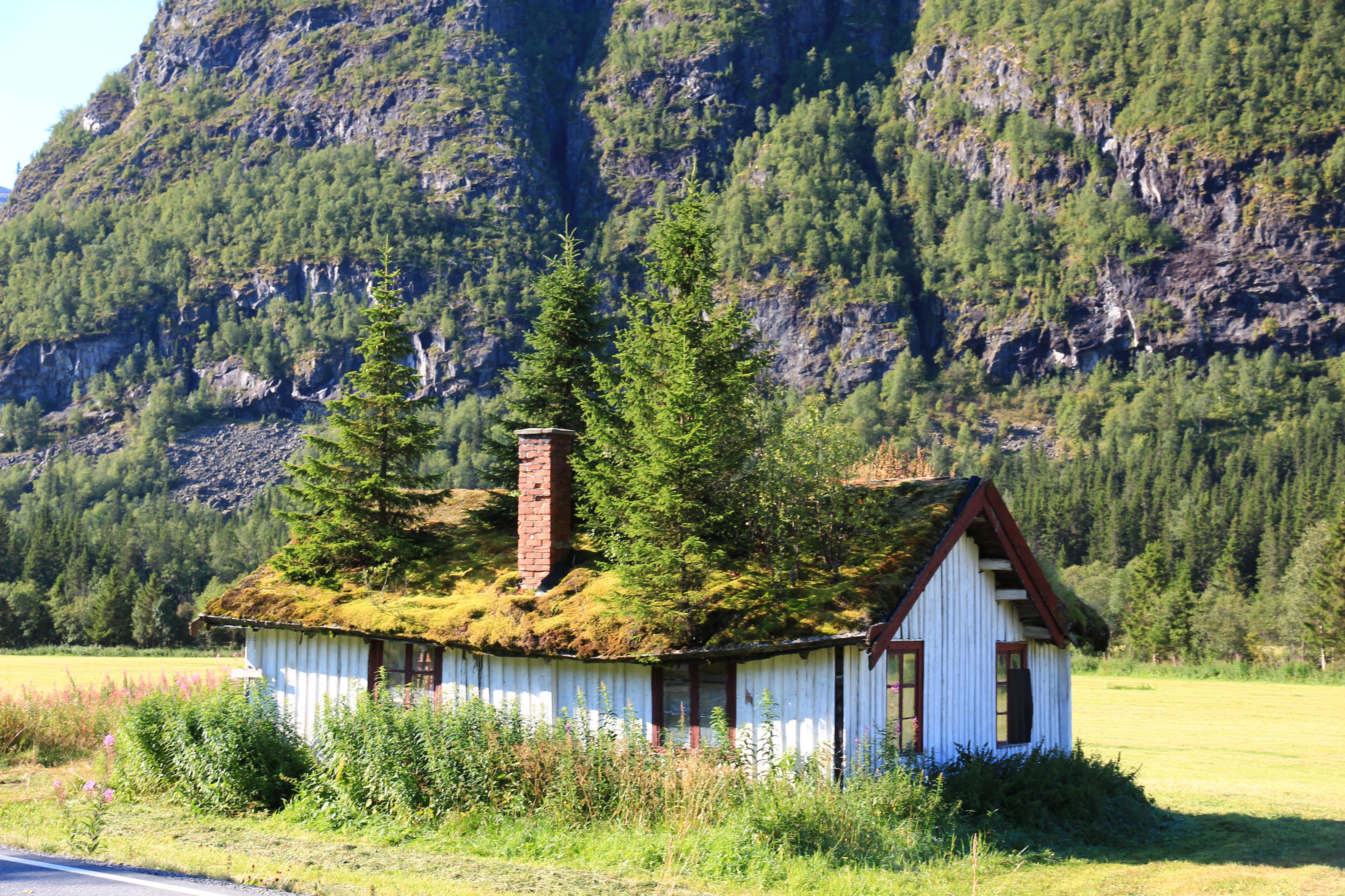 Gratis Dating I Norge Hemsedal For