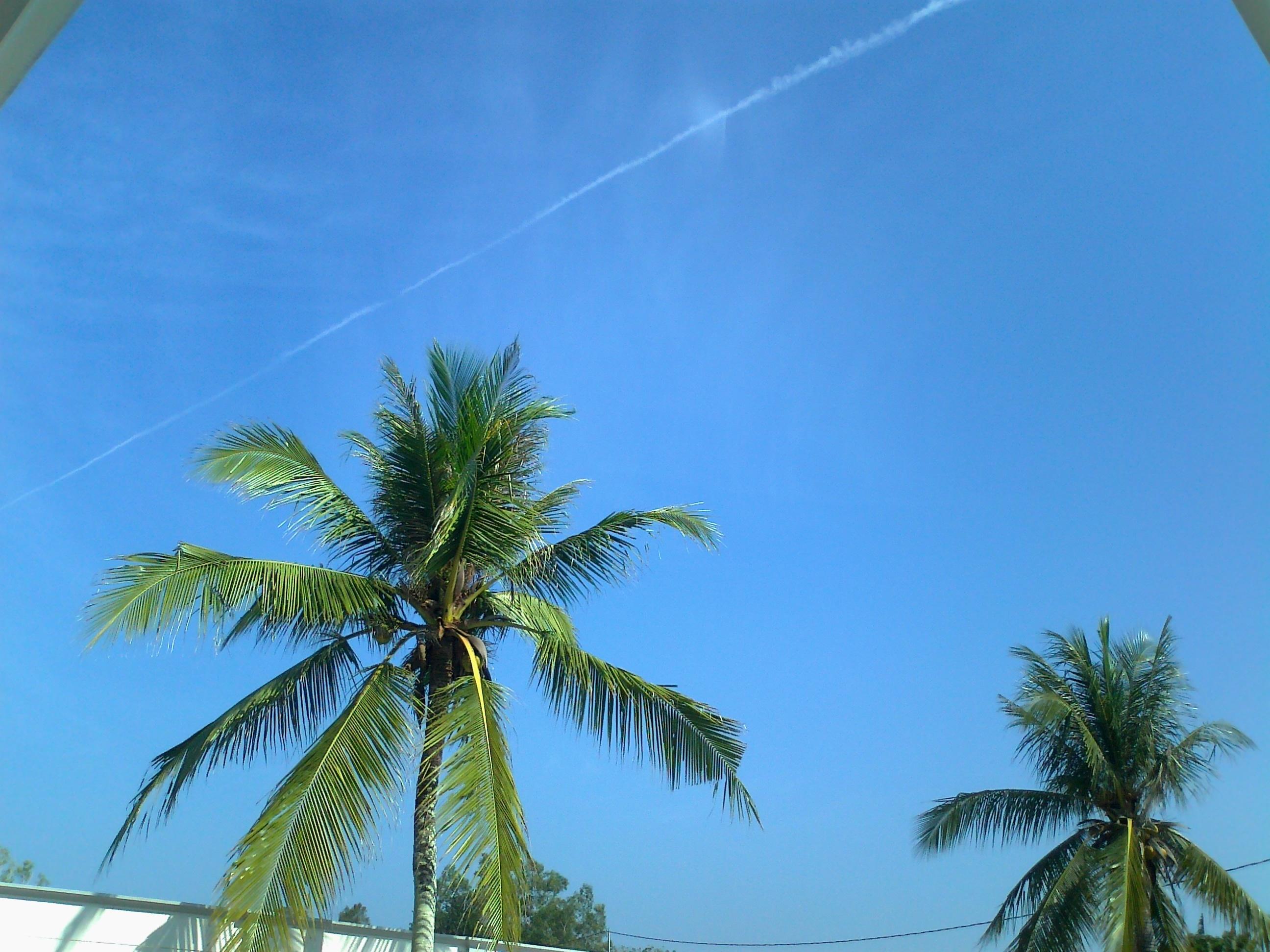File:langit di palangkaraya pasca melintasnya pesawat tempur tni-au
