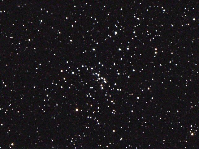 M48a.jpg