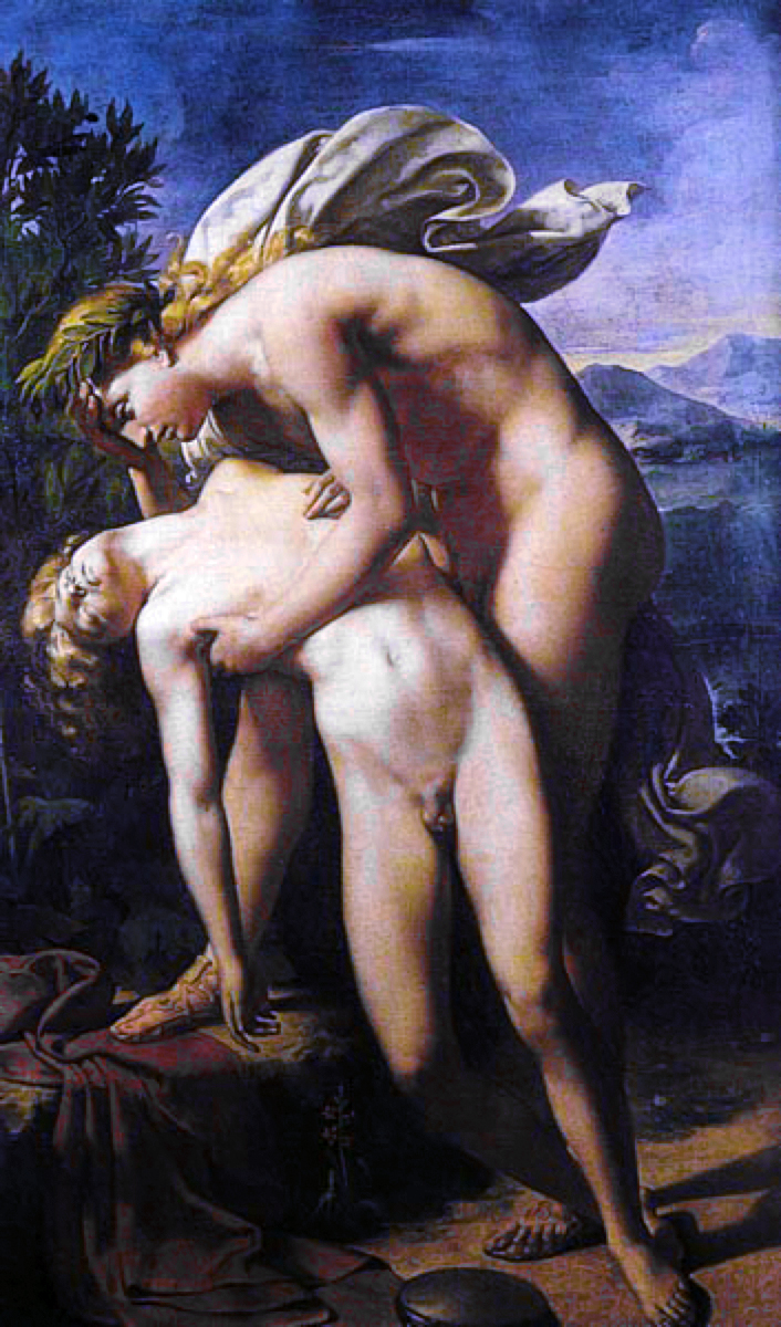 http://upload.wikimedia.org/wikipedia/commons/6/66/Merry-Joseph_Blondel%2C_The_Death_of_Hyacinthus.jpg