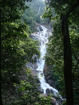 Tambdi falls inside Bhagwan Mahaveer Sanctuary and Mollen National Park