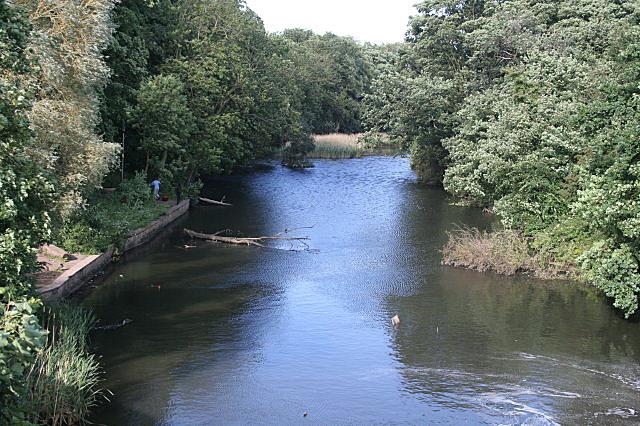 River Maun at Kings Mill - geograph.org.uk - 856924