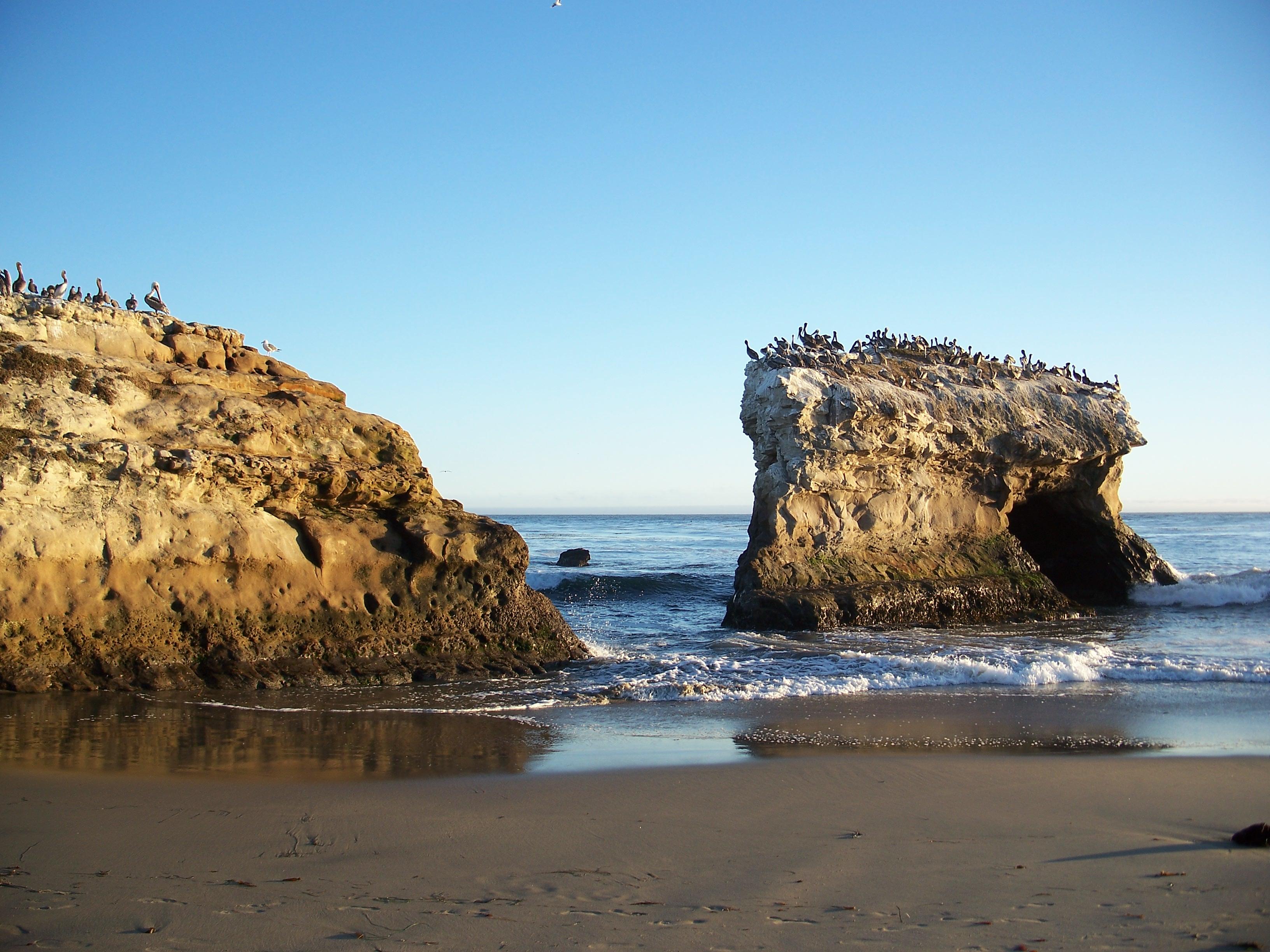 File Usa Santa Cruz Natural Bridges State Beach 11 Jpg