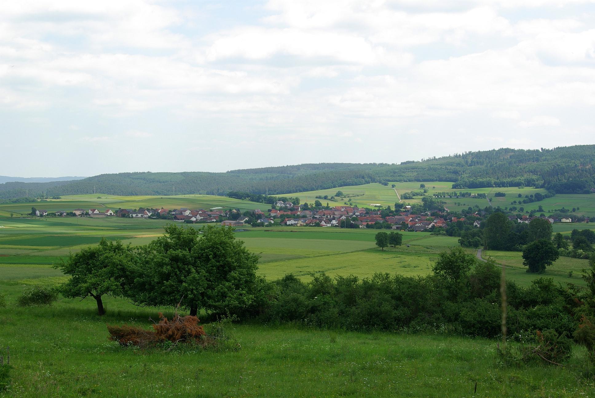 Warzenbach