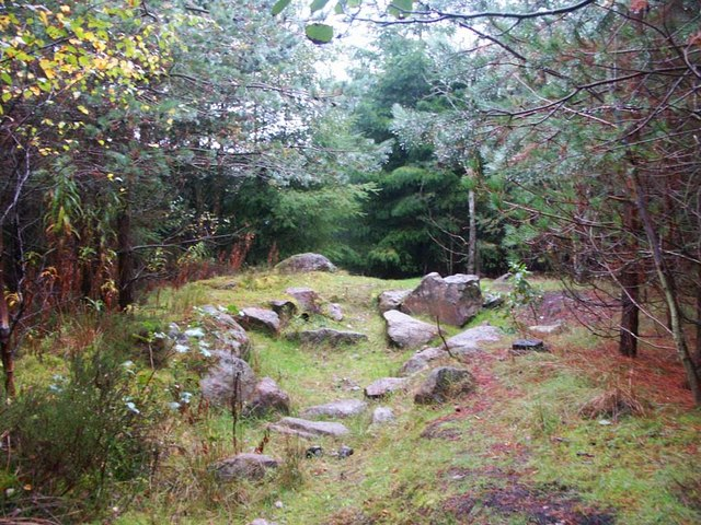 Whinfell Forest clearing - geograph.org.uk - 347555