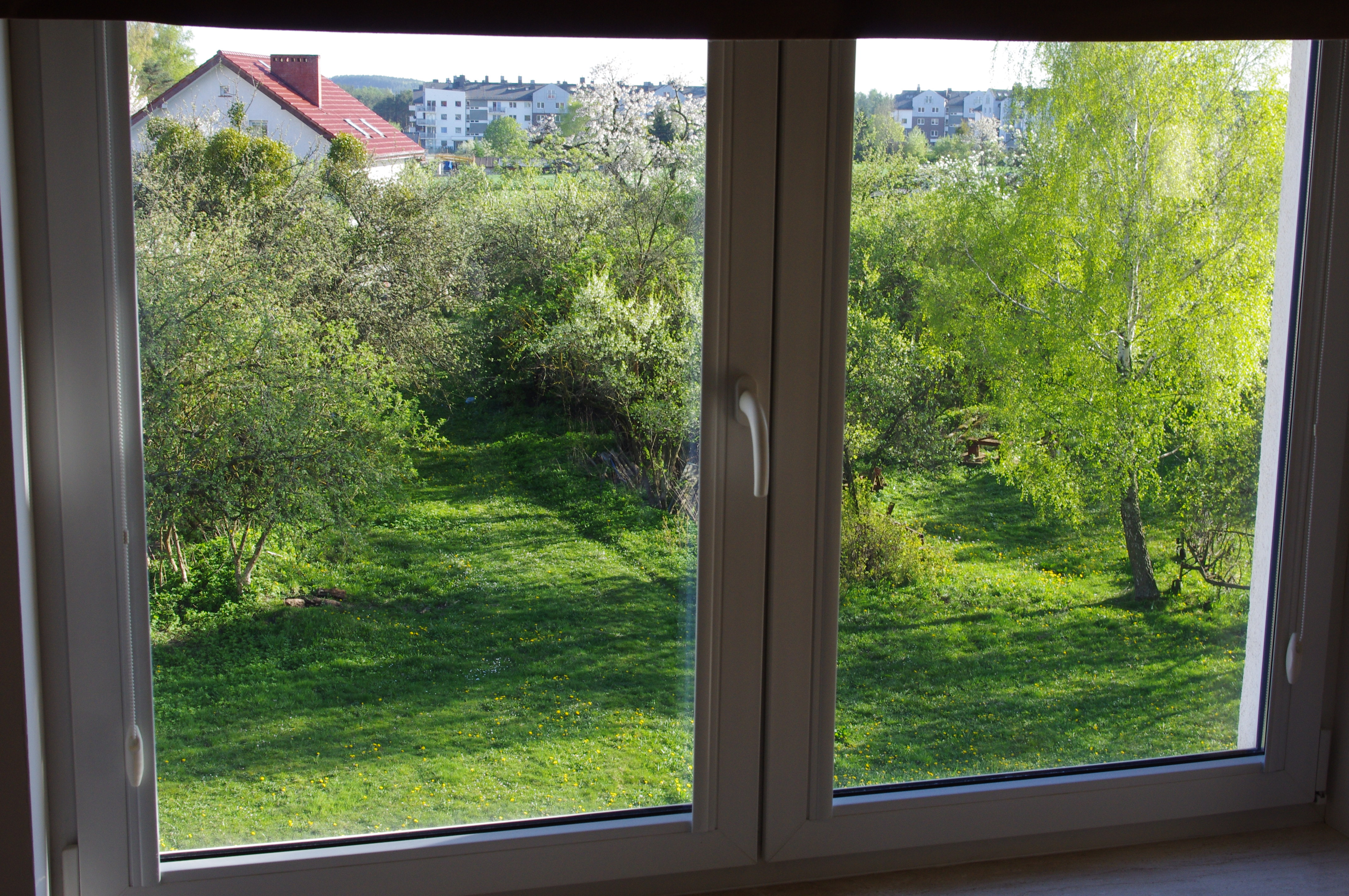 File Window View With Green Trees Wikimedia Commons