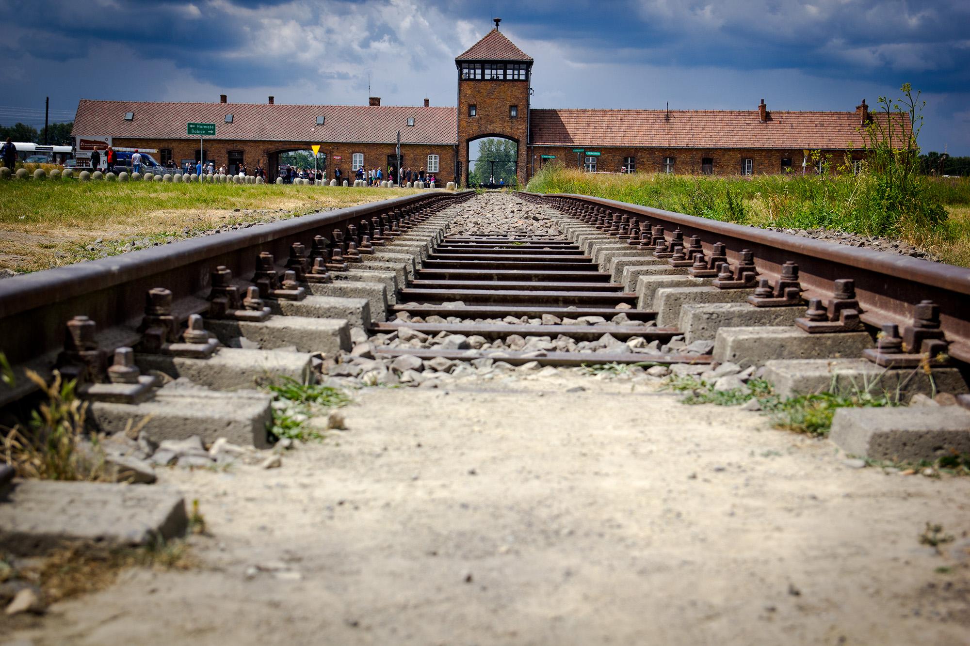 Освенцим: история одного города мысль
