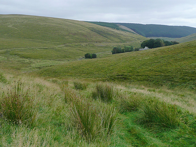 File:Across the Camddwr Valley near Maesglas farm, Ceredigion - geograph.org.uk - 1517943.jpg