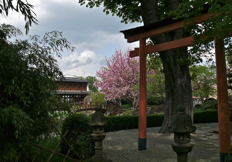 Filebad Langensalza Japanischer Gartenjpg Wikimedia Commons