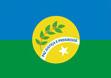 Bandeira OuroVerdedeGoias.jpg