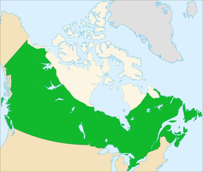Canada Tree Line Map File:Canada tree line map.png   Wikimedia Commons