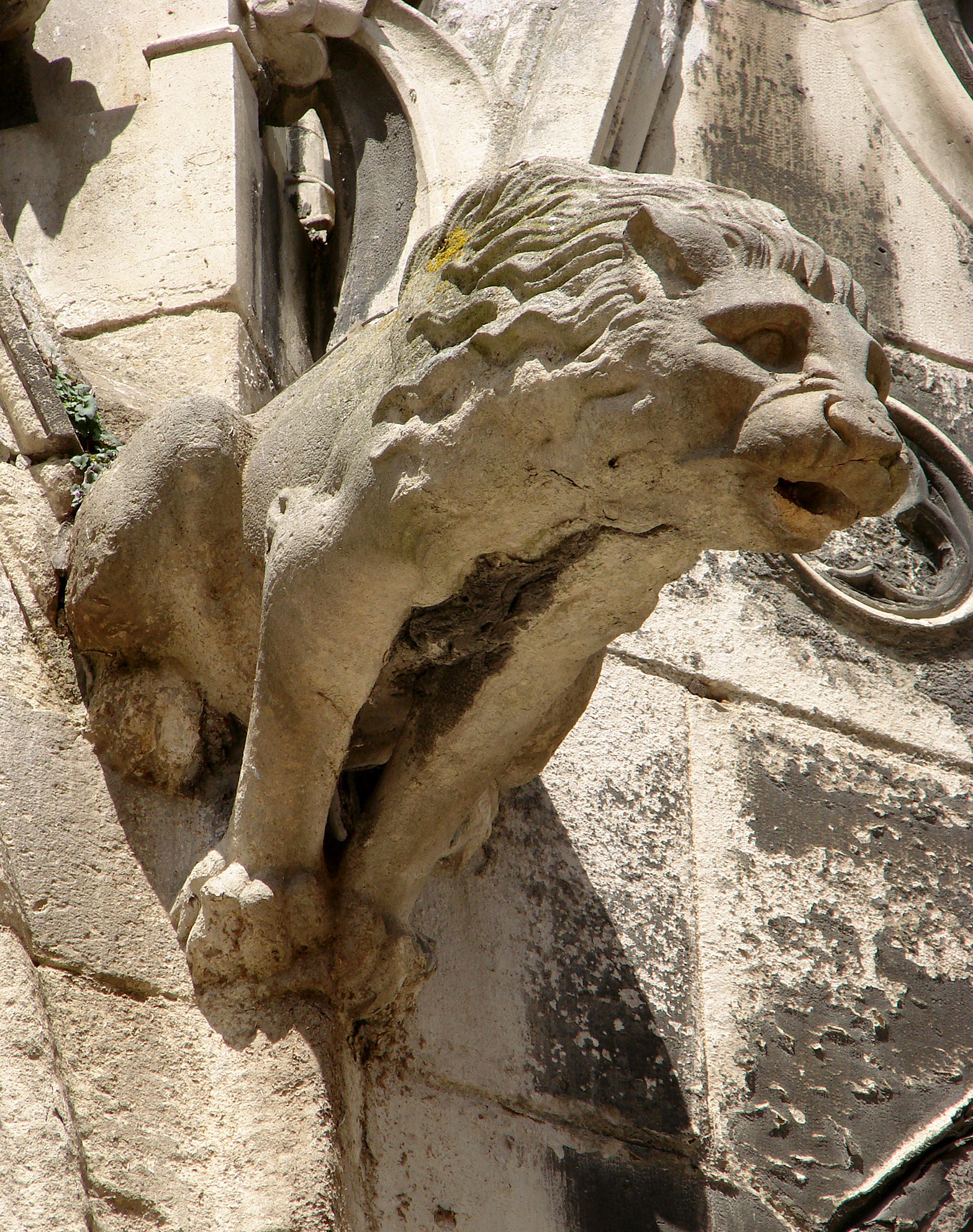 A Gargoyle at the Cathedral of Meaux
