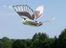 definition of ornithopter