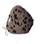 Dalmation jaspis.PNG