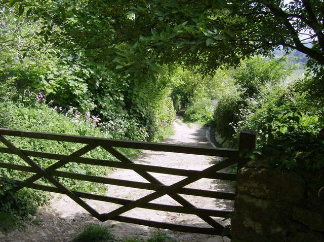 Descent from Cadbury Castle - geograph.org.uk - 486294