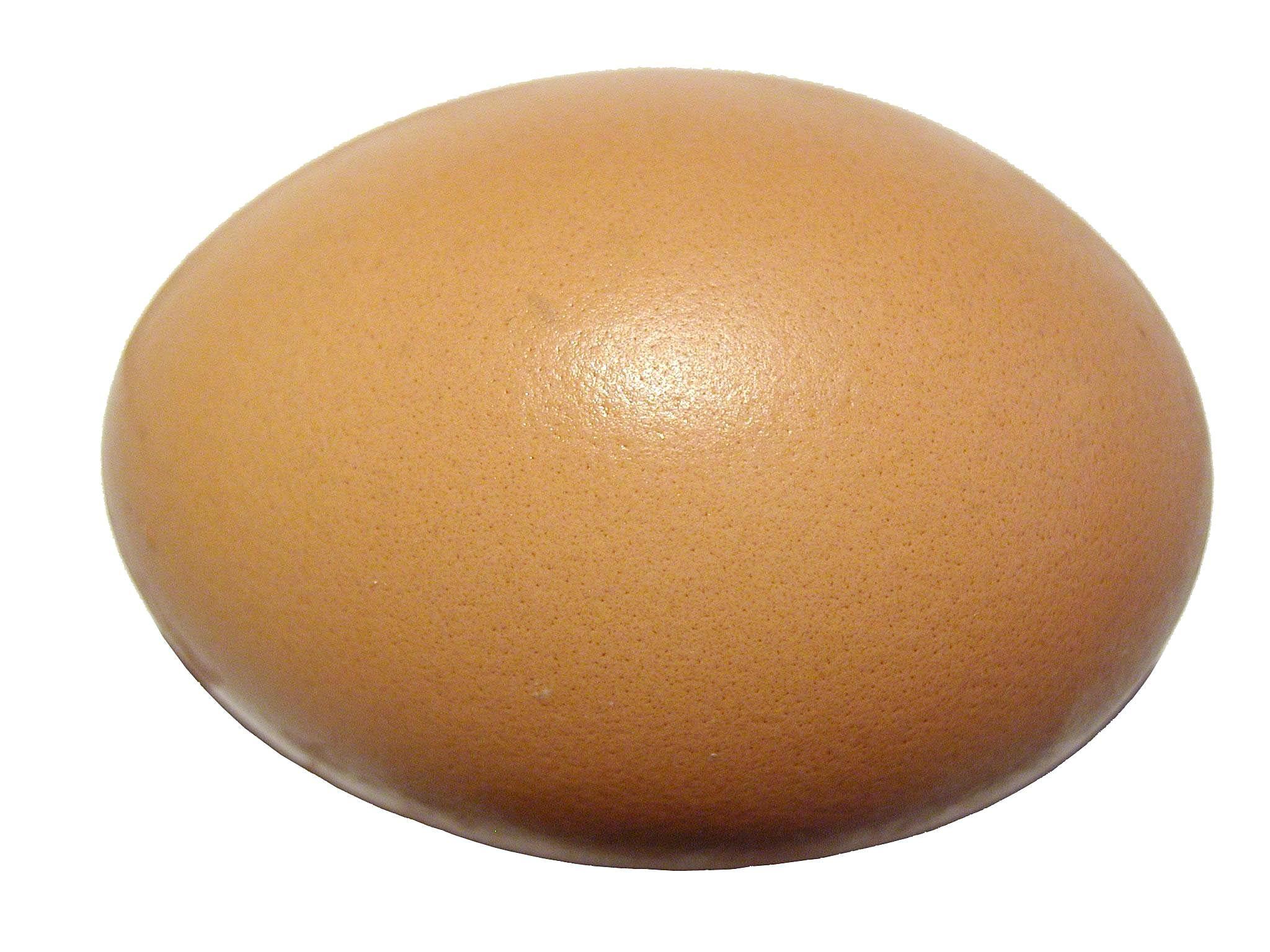 Egg - raw
