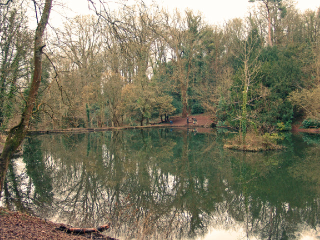 Fish Pond - geograph.org.uk - 6195