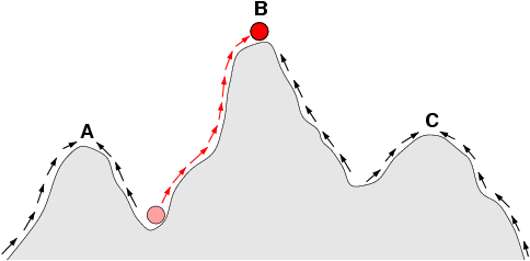 Sketch of a fitness landscape. The arrows indicate the preferred flow of a population on the landscape, and the points A, B, and C are local optima. The red ball indicates a population that moves from a very low fitness value to the top of a peak. Illustration by C.O. Wilke, 2001.