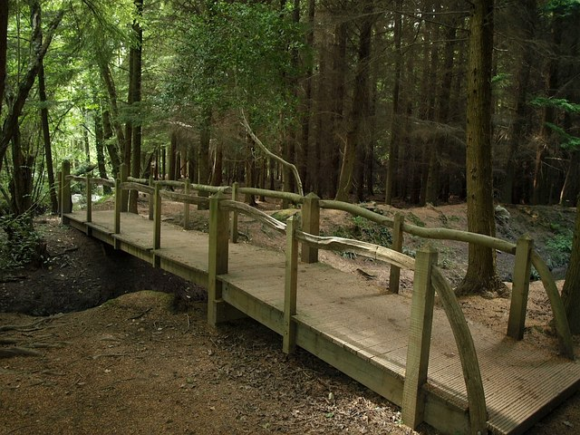 Footbridge, Newpark Plantation - geograph.org.uk - 872937