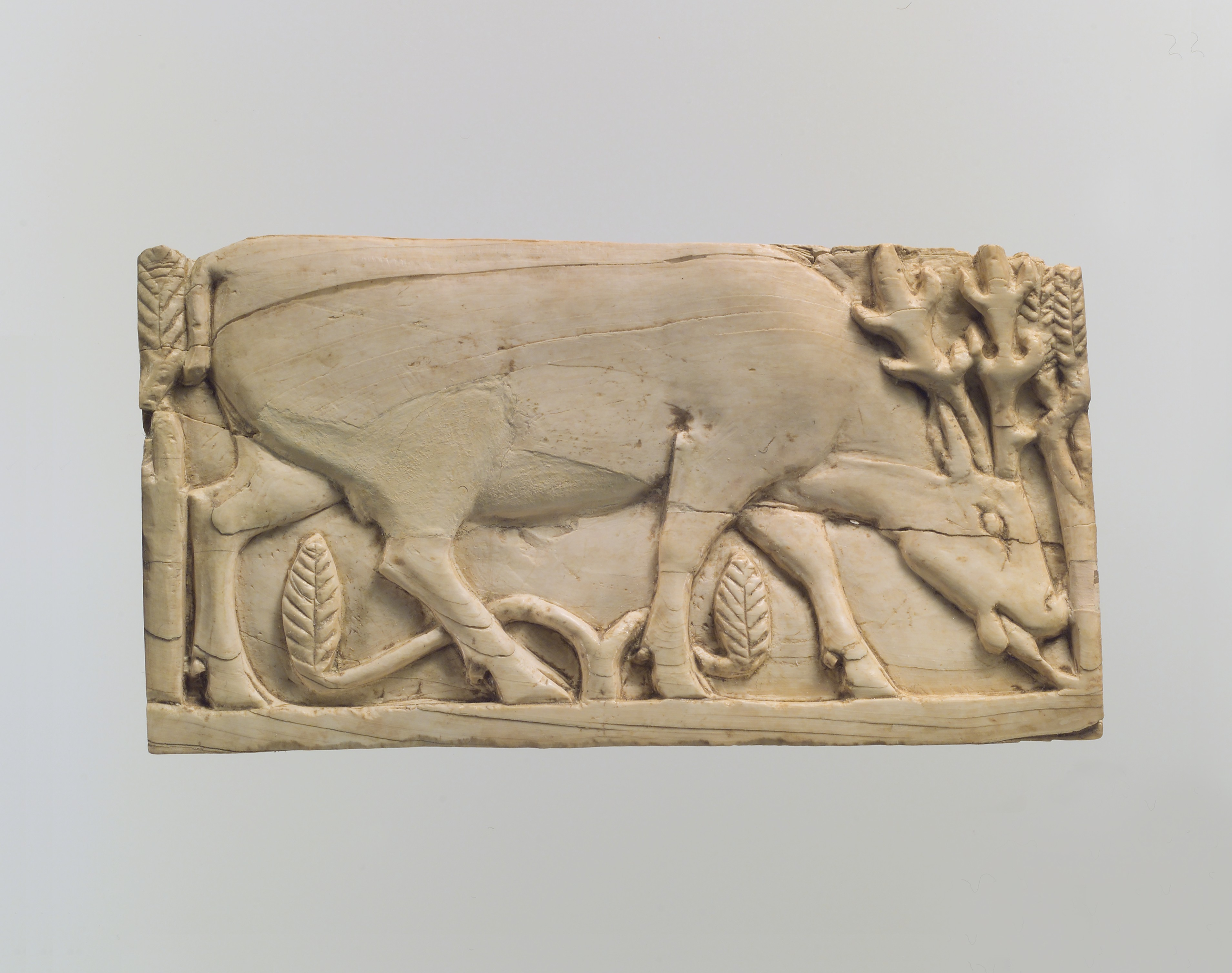 File furniture plaque carved in relief with a stag grazing among