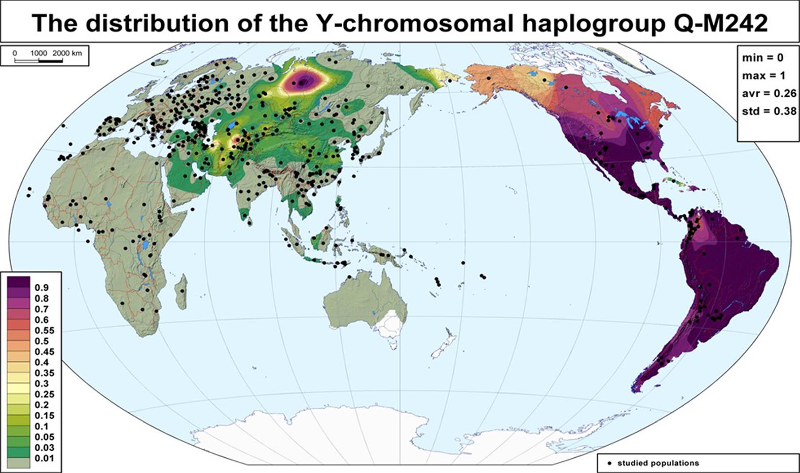 Y chromosome haplogroup