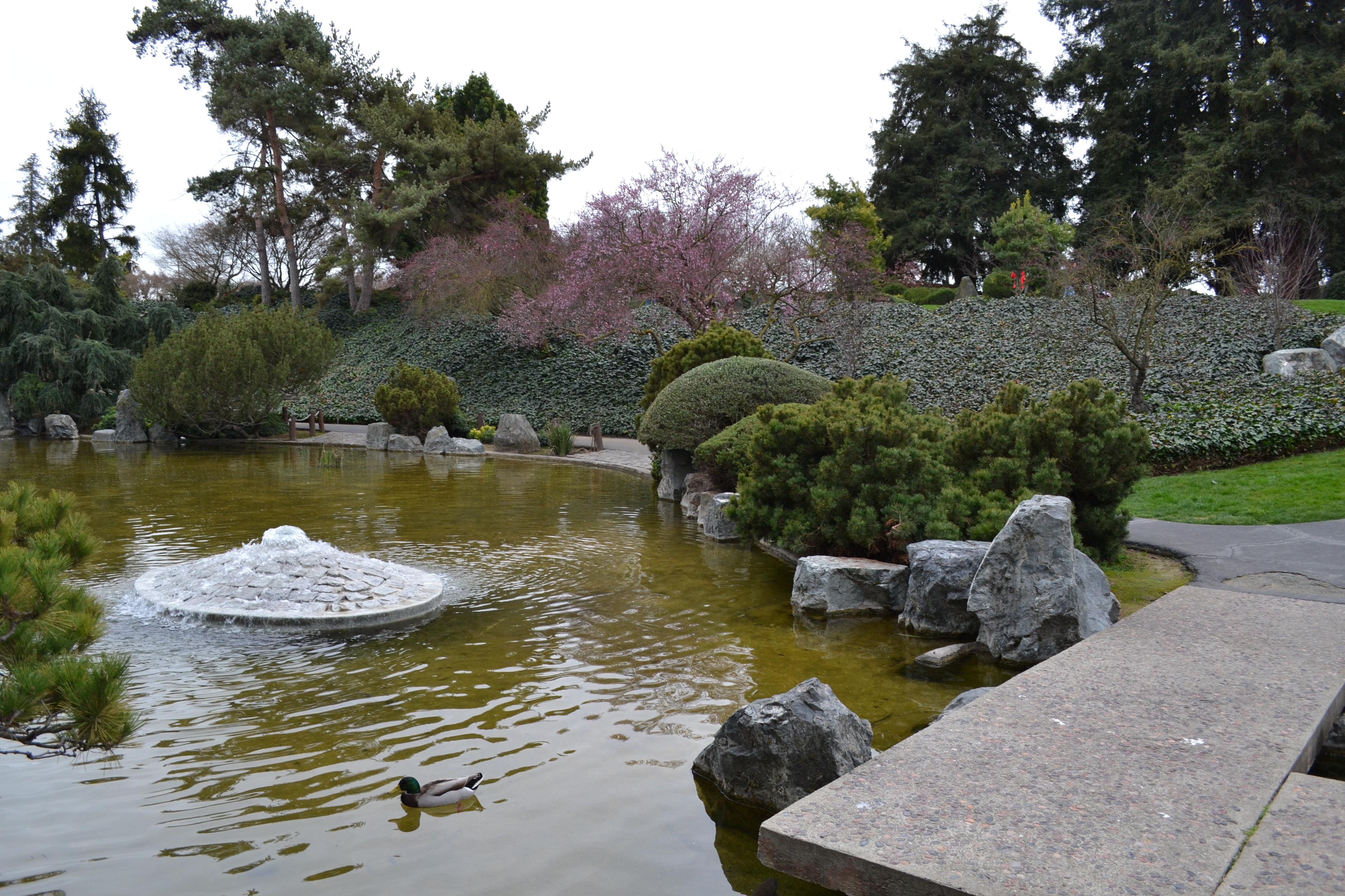History park at kelley park for Japanese friendship garden